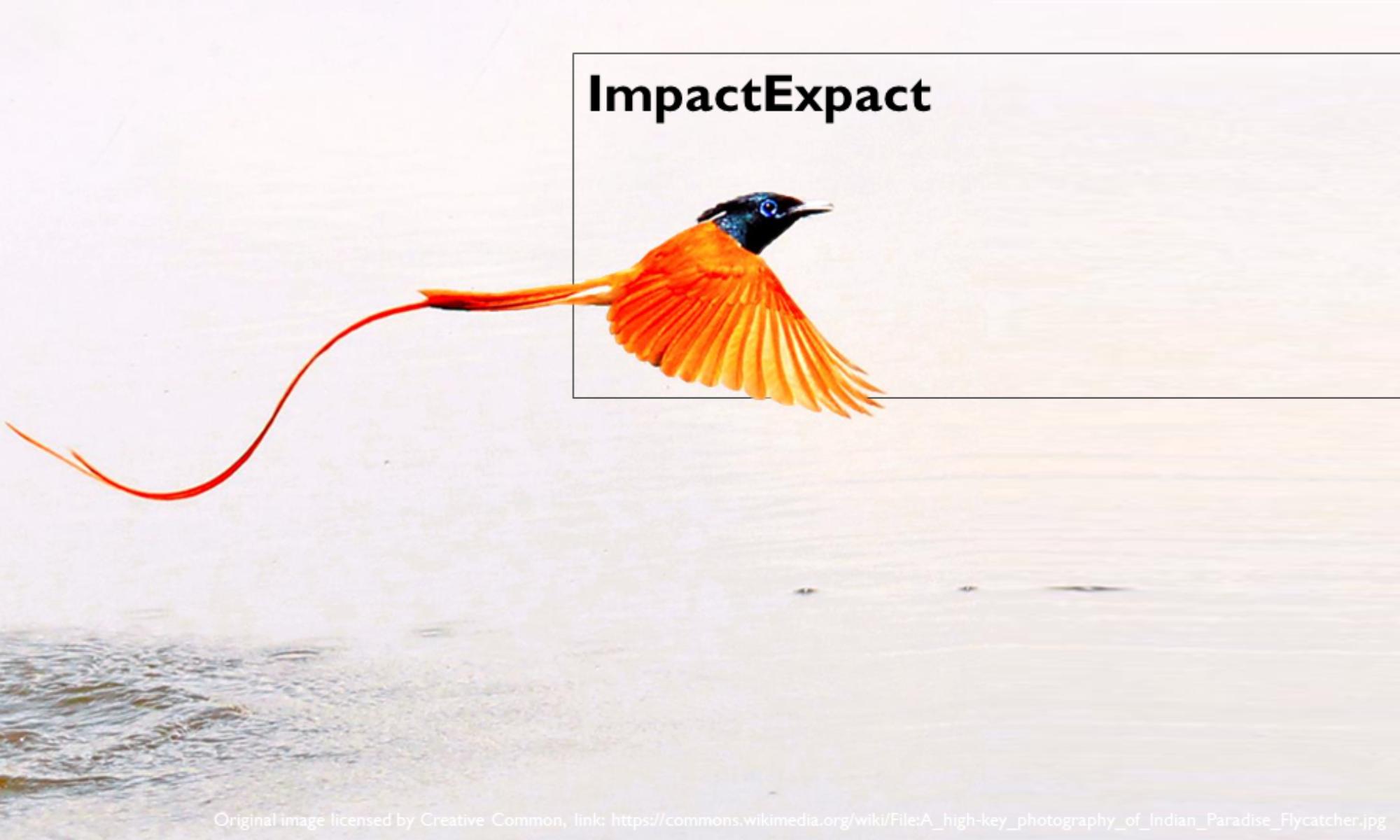 ImpactExpact